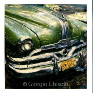 Cuba - Green glossy snout