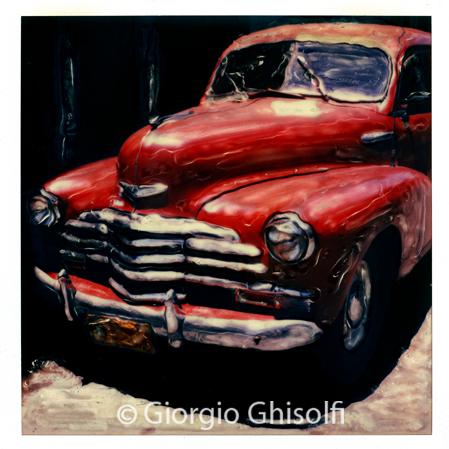 Cuba - Red snout