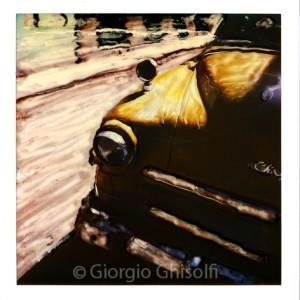 Cuba - Yellow snout